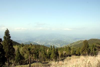 山並みと緑