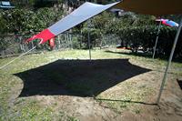 六角形のヘキサ